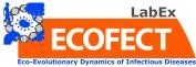 logo-ecofect_baseline