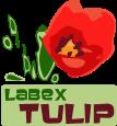 LogoTULIPgrand