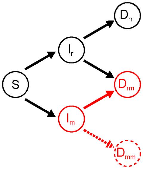 Image pour illustration recommandation